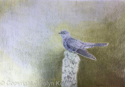 114. Cuckoo