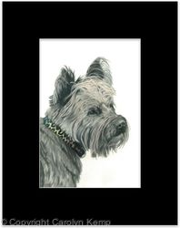 96. Cairn Terrier - Charming Charlie