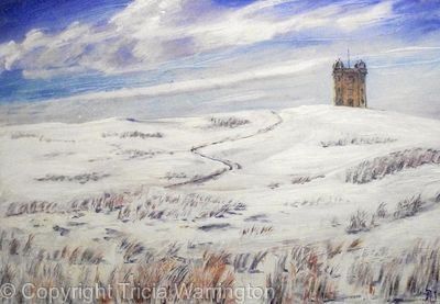The Cage Lyme Park in the snow