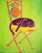 Cat on Garden Chair