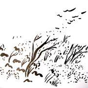 alighting birds