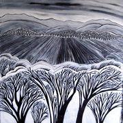 winter  field 2013