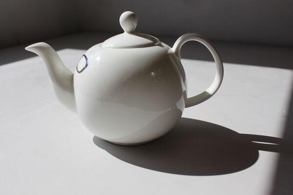 'Dr Zee' TeaBod (L 6 cup)
