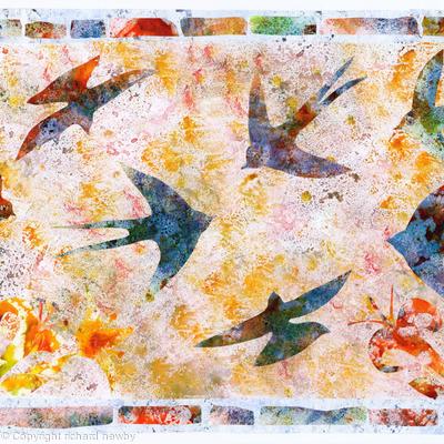 Santorini Swallows