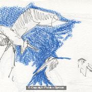 sketchmob-summer-school-patrick-3