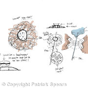 Birds nest concept diagrams coloured