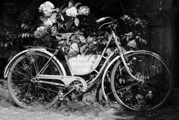 Vieux Cycle