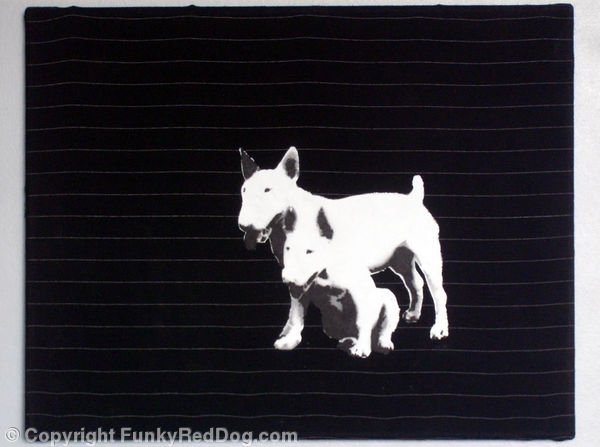 2 dogs on Pinstripe