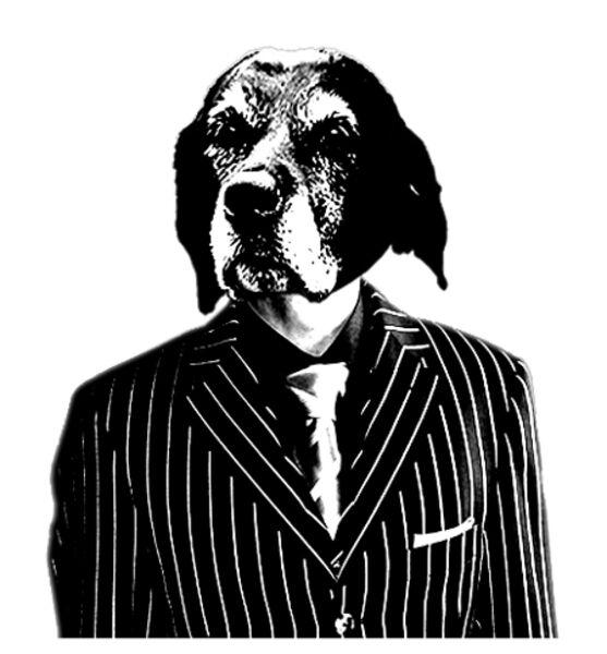 dog-hed-1-bwpng