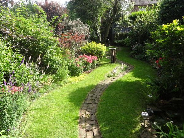 Garden July 2016