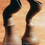 Sculptural pair