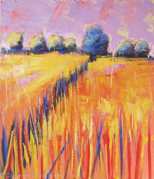 Orange Fields Sunset