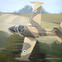strikemaster-painting