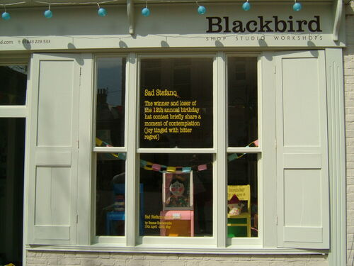 Blackbird window