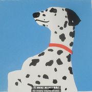 spottydog