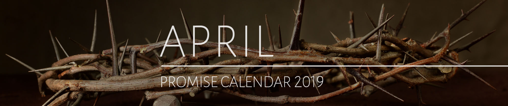 April 2017 Promise Calendar Header