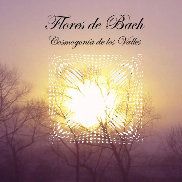Flores de bach - Cosmogonia de los Valles