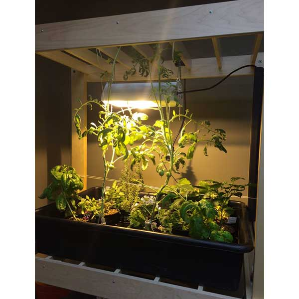 Stock #38878   Diversified Woodcrafts HGC 52 Hydroponics Growing Center