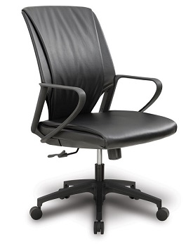 10121-maxima-ii-series-conference-chair