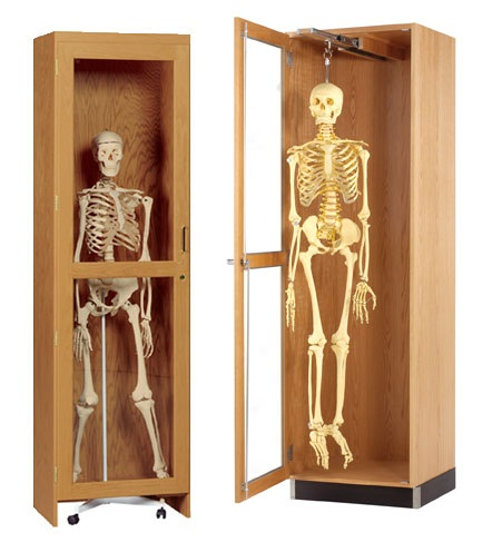 skeleton-cabinet-diversified-woodcrafts