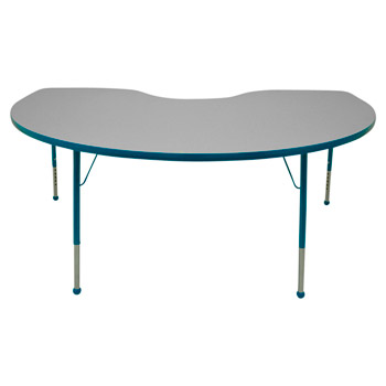 4872k-kidney-activity-table