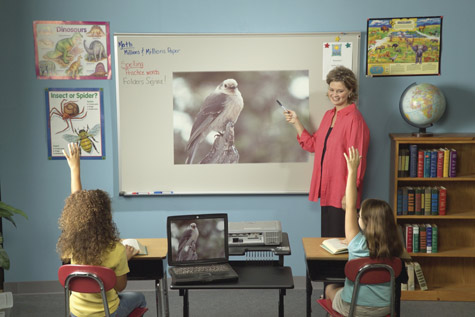 Projection Dry Erase Board Classroom