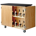 Click here for more Mobile Microscope Storage Cabinet by Diversified by Worthington