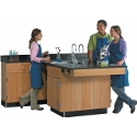Click here for more Perimeter Science Lab Classroom Workstations by Diversified Woodcrafts by Worthington