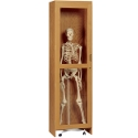 Click here for more Skeleton Science Cabinet by Diversified Woodcrafts by Worthington