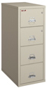 Click here for more Fire-Resistant Safe-in-a-File by FireKing by Worthington