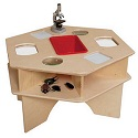 Click here for more Deluxe Science Activity Table by Wood Designs by Worthington