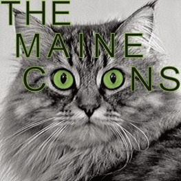 the maine coons