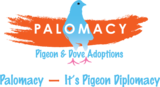 Palomacy logo with tagline