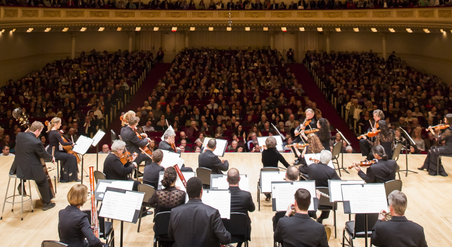 orpheus orchestra Join us for the opening of our 2017-18 concert season, with orpheus chamber orchestra and revered cellist mischa maisky in his only nyc appearance of the year.