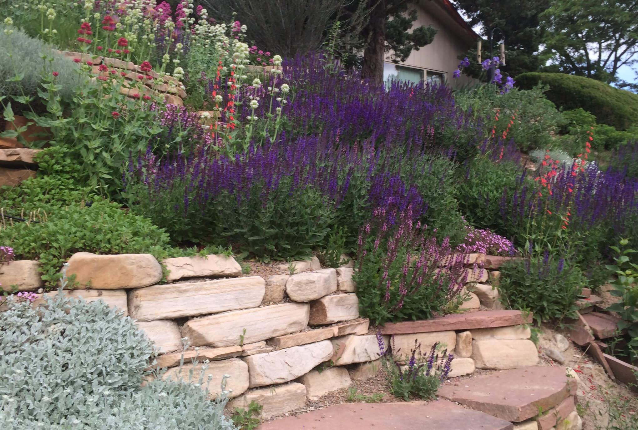 Custom Landscaping & Design