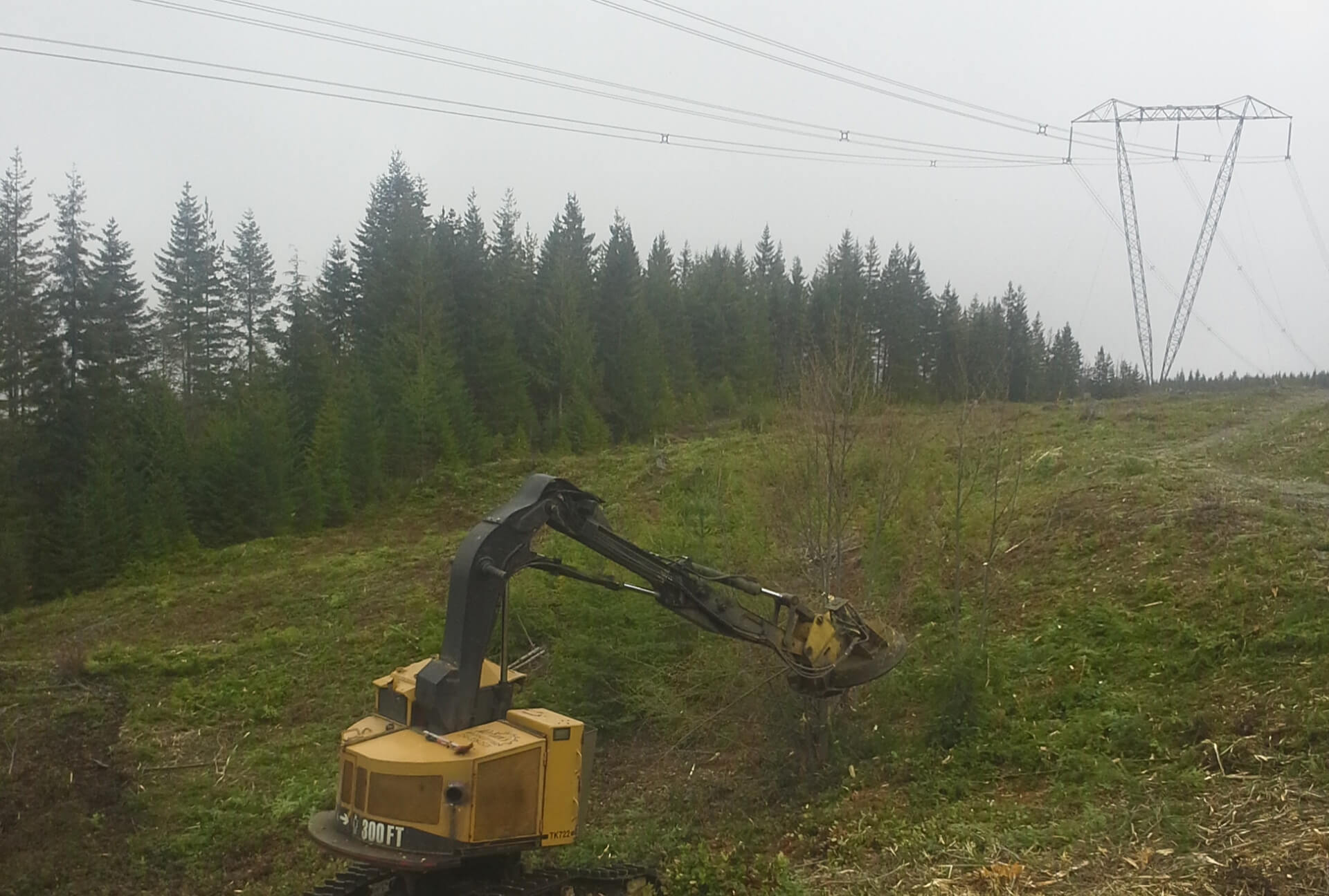 Brush Removal in Vancouver Island, B.C.