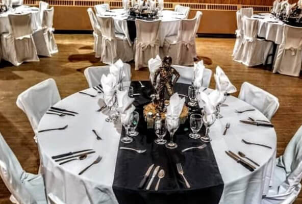 Linen, Napkins, & Chair cover Rentals