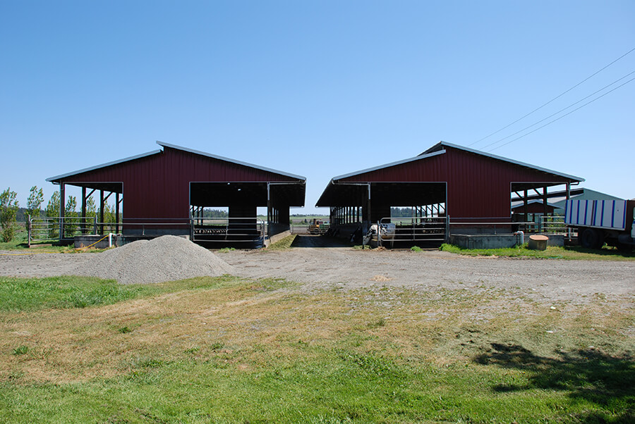 Ebey Road Farm, Whidbey Island