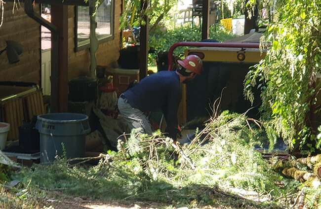 Wood Chipping in Victoria