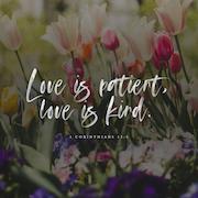1 Corinthians 13:4 Verse Image