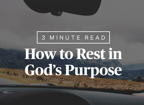 How to Rest in God's Purpose