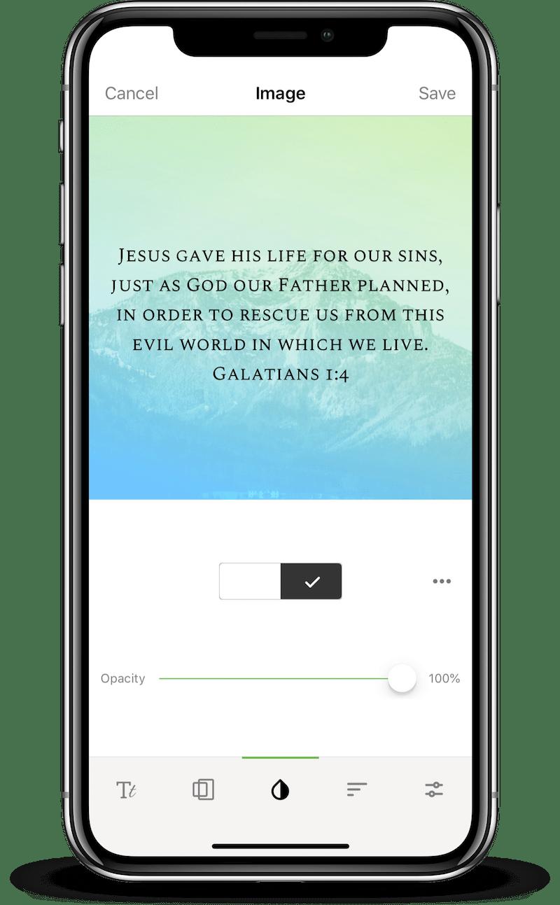 Font Color Options