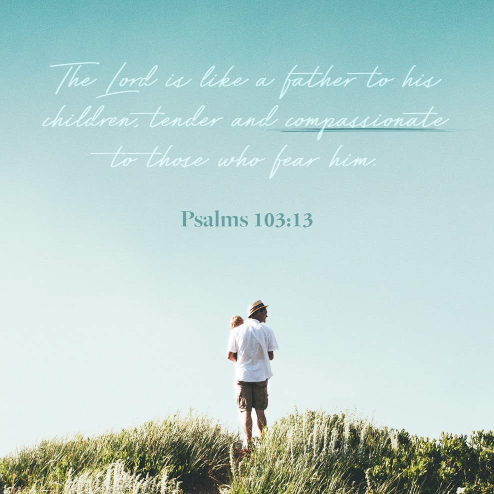 Verse Image for Psalms 103:13