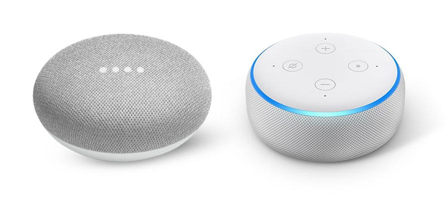 Google Home Mini & Alexa Dot
