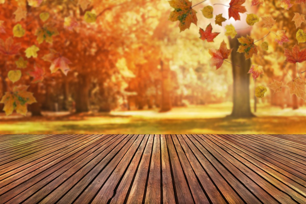 Property Management Tips for Getting Your Rental Property Ready for Fall