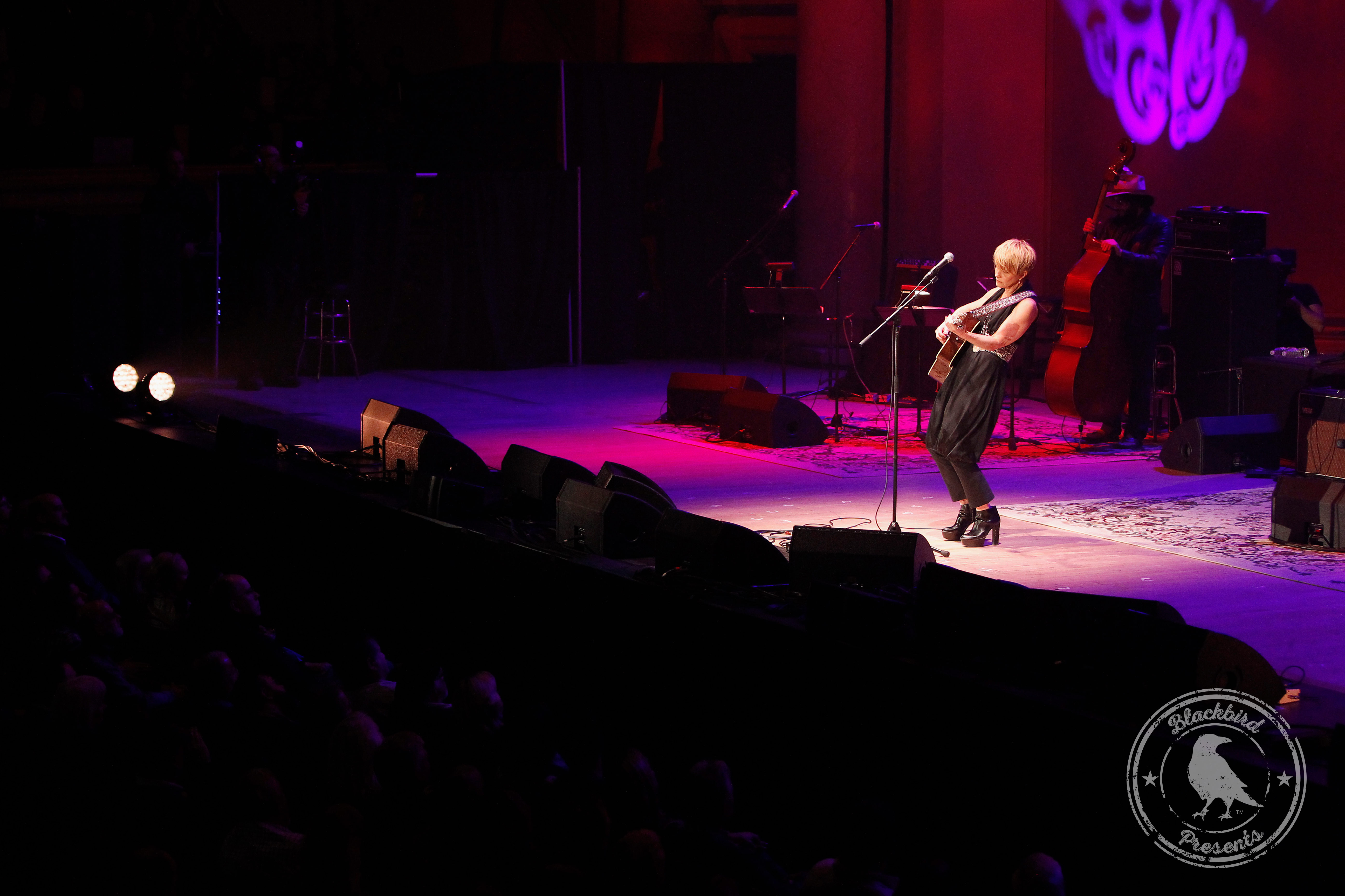 Life & Songs Of Emmylou Harris Gallery Shawn Colvin
