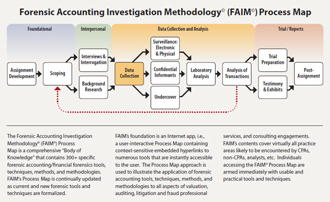 Forensic Accounting Academy C