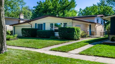 231 N ILLINOIS AVE, Glenwood, IL 60425 - Photo 1