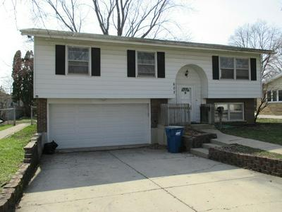 602 S 5TH ST, WEST DUNDEE, IL 60118 - Photo 2