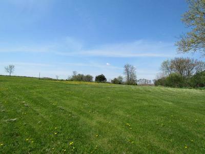 10494 FREEPORT RD, Durand, IL 61024 - Photo 2